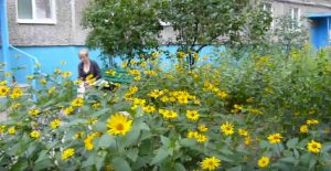 Transition stories from Dnipro, Ukraine (Part I)